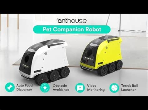 pet technologies company youtube anthouse pet companion robot amazing technology youtube