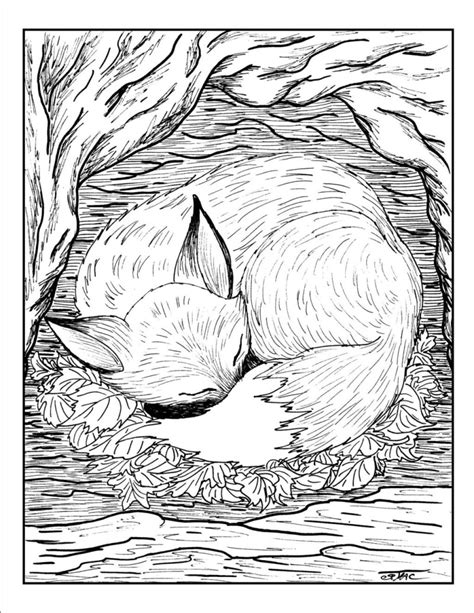 Coloring Page Fox by Free Coloring Pages Of 1035