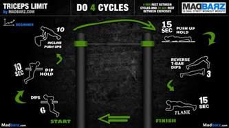 the madbarz beginner routines workout