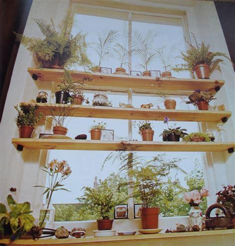 plant shelves in window decorating pinterest
