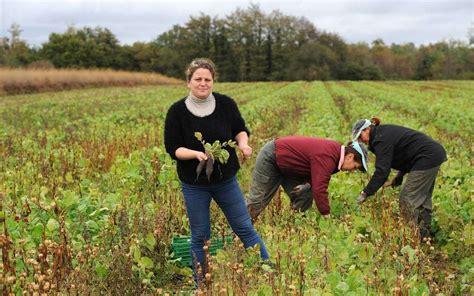chambre d agriculture landes landes bio et productif c est possible sud ouest fr