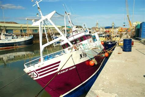 fishing boat licence ireland file fishing boats at kilkeel 3 geograph org uk