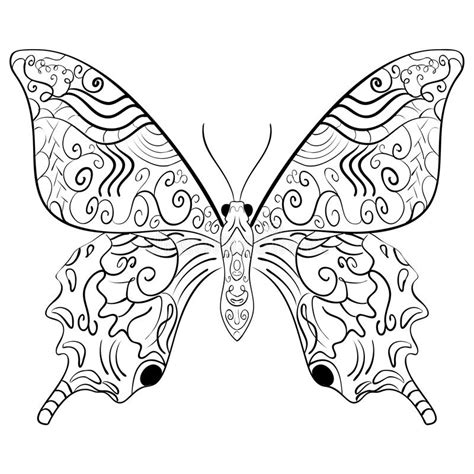 z coloring book for and adults 40 illustrations books butterfly vector illustration zentangle style stock