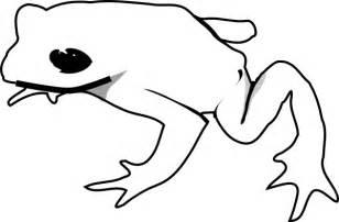 animal outlines frog outline animal clip at clker vector clip
