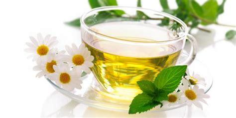 Air Kotak Teh Bunga khasiat kesehatan dari teh bunga chamomile banyobiroe