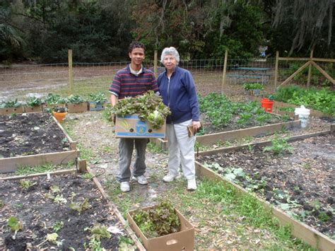 photo of flagler county master gardeners work with the