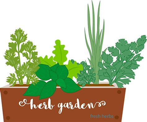 Herb Pot by Gardening Herbs Growing In Garden Container 236 Clipart