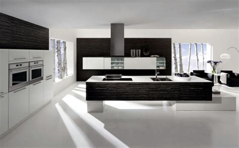 kitchen design elements the cult and neos kitchen designs with wooden elements of
