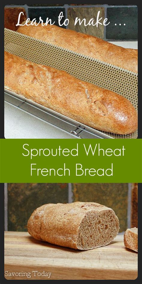 whole grains easy to digest best 25 sprouted whole grain bread ideas on