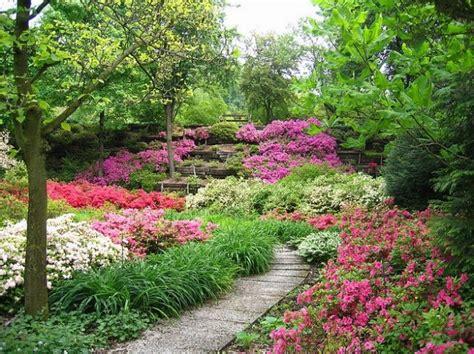 come creare un giardino fiorito come realizzare un giardino foto 3 7 tempo libero