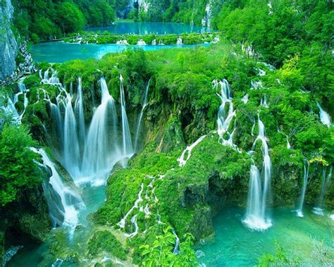 waterfalls in the world 11 awe inspiring waterfalls from all the world dailyforest