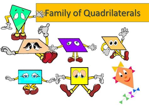 12 Sided Polygon Interior Angles Family Of Quadrilaterals