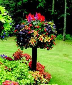 Nice Flower Garden Nice Flower Arrangement Gardening Pinterest