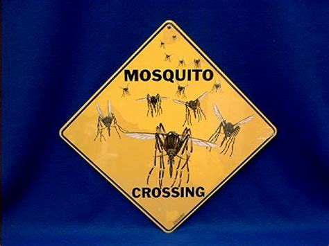 mosquito crossing sign  animal world