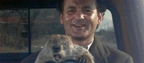 groundhog day hulu groundhog day 1993 28 images groundhog day 1993