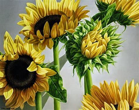 imagenes de flores para pintar al oleo bodegones de flores y frutas al oleo paisajes oto 241 ales