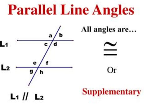 supplementary lines ppt parallel line and angles powerpoint presentation