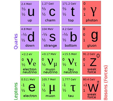 standard model the ultimate field guide to subatomic particles gizmodo