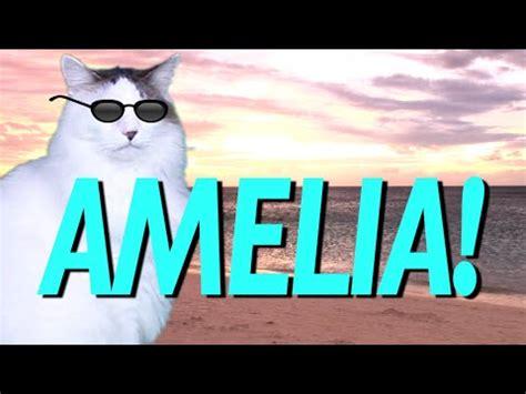 happy birthday amelia epic cat happy birthday song