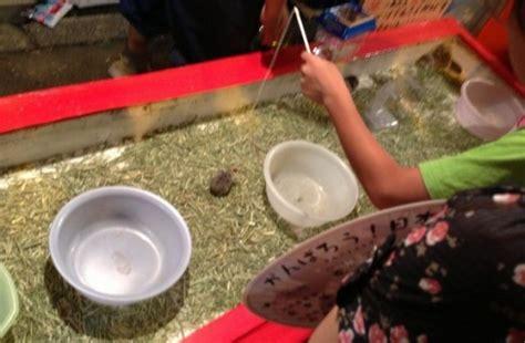 permainan membuat takoyaki kios memancing hamster di festival musim panas osaka