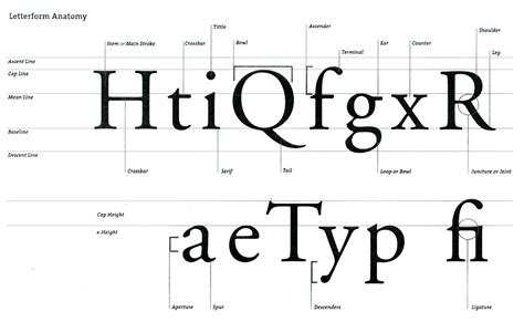 typography finial typography anatomy