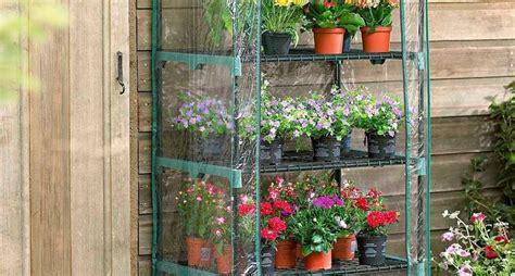 serre da appartamento modelli serre da balcone piante da terrazzo serre da