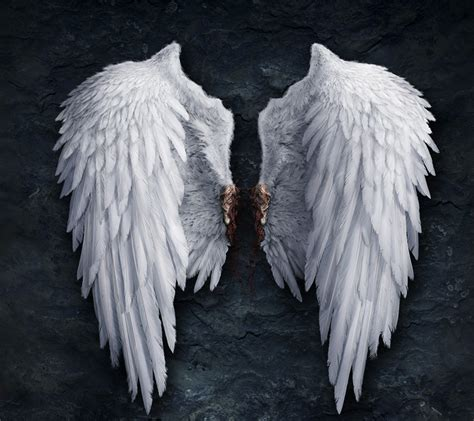 on angel wings realistic angel wings drawings images