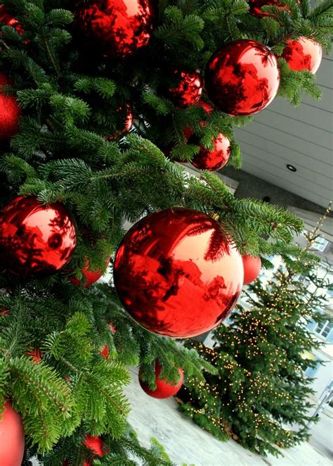 ls outdoor christmas decorations trees best 25 outdoor trees ideas on porch tree outdoor