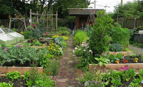 vegetable gardening in arizona arizona in vegetable garden calendar gardening flower