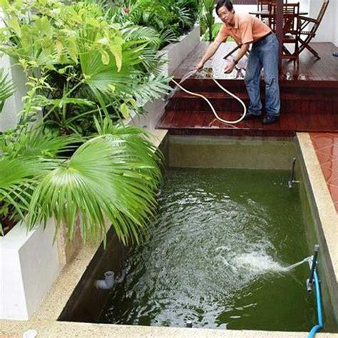 backyard fish pond maintenance fish pond design koi pond maintenance