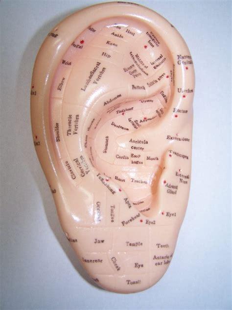 ear reflexology benefits   healing place