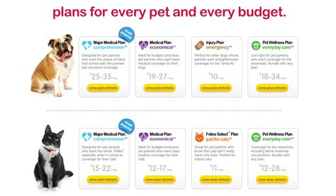 puppy insurance top 229 complaints and reviews about nationwide pet insurance