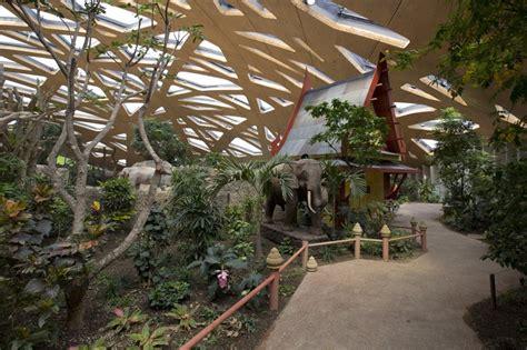 zoo designboom markus schietsch architekten caps elephant sanctuary with