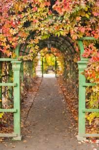 Garden Arch Cheap As Chips Get Cheap Garden Arch Aliexpress Alibaba