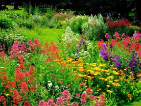 Flower In Garden Pictures How To Grow A Flower Garden For The Time Garden