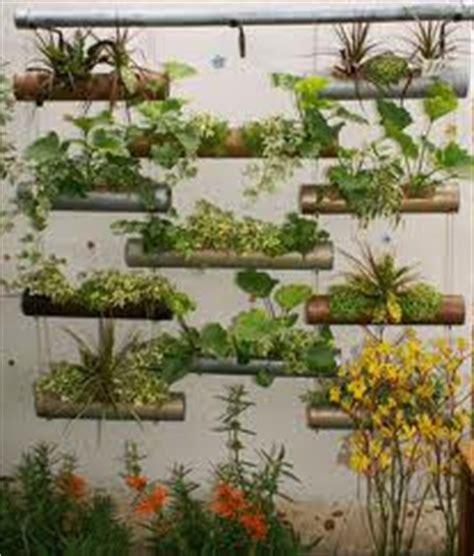 gambar desain vertikultur jenis tanaman untuk pekarangan mancing info