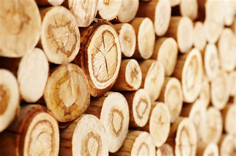 How To Make Paper From Wood - sawlog prices trending in europe