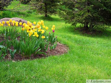 spring garden ideas 15 spring garden design ideas flower beds and evergreen