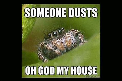 Cute Spider Meme - misunderstood spider meme barnorama