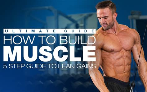 supplement to build best bodybuilding workout for building eoua