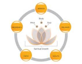 Symbolism Of The Lotus 17 Best Ideas About Lotus Flower Meanings On