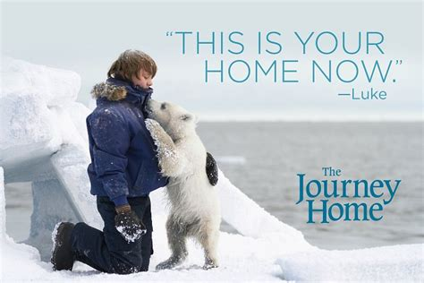 the journey home dvd 50 walmart giveaway thesuburbanmom