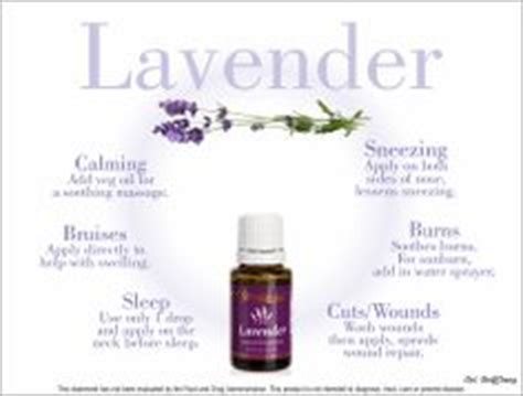 Cool Scents Lavender 1000 images about but cool essential oils on living essential oils
