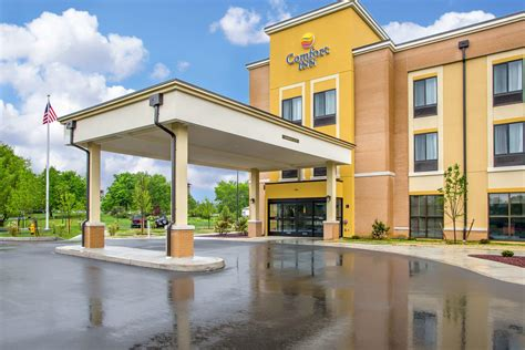comfort suites carlisle hotels lion country lodging