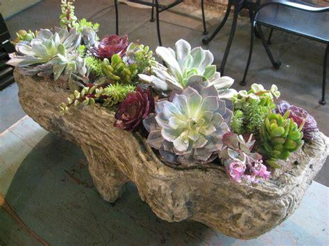 unique planters for succulents summer succulent gardens shopinbloom s blog