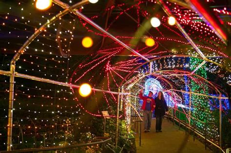 Lights Atlanta Botanical Gardens 10 Gardens That Glitter With Lights Garden Destinations Magazine