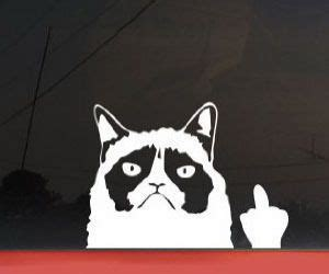 Middle Finger Cat Meme - grumpy cat car decal grumpy cat quotes pinterest