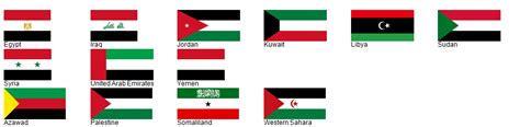 Arabic Flag Set 3in1 flag review element of flags color palettes