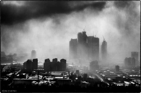 in citt city in smoke animals photos