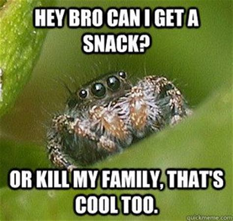 Misunderstood Spider Meme - misunderstood spider meme quickmeme stuff that makes